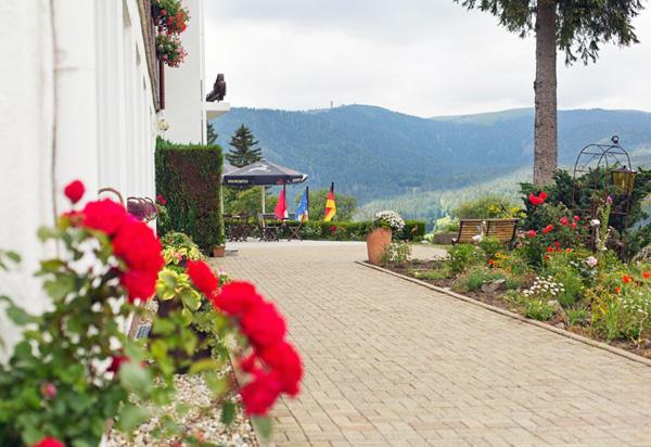 Hotel Diana Feldberg-Bärental im Schwarzwald
