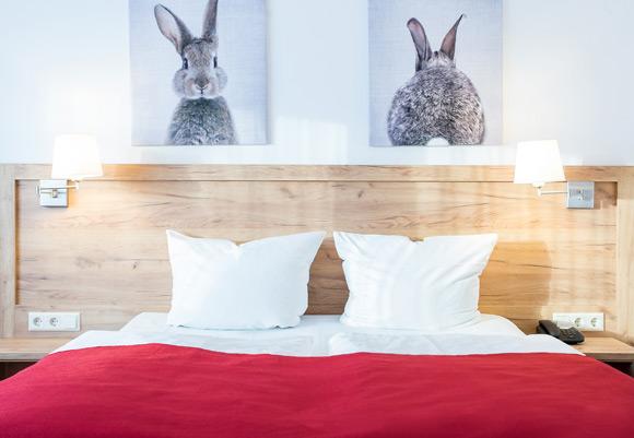 Doppelzimmer Hotel Diana in Feldberg